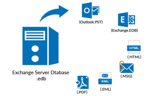MS Exchange Server